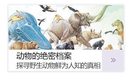 动物绝密档案