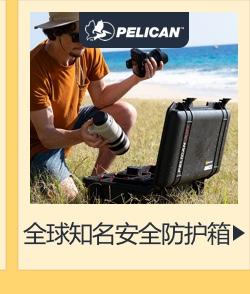 Pelican 派力肯