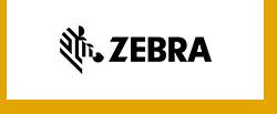 Zebra 斑马
