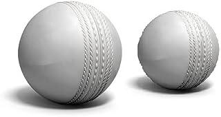 AANSSS 皮革板球挂球/练习球/打击球,带绳子/绳子/绳子,适合球员,初学者/手眼协调