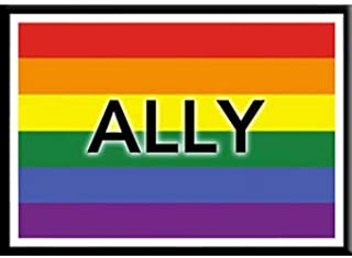 ALLY FLAG - 冷冻机 MAGNET,LGBTQ *原创艺术品,6.35cm x 8.89cm