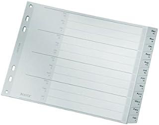 Leitz 利市 12880085 A4 索引分隔纸板封面和 20 个塑料隔板,带每月打印,半高,超宽,灰色