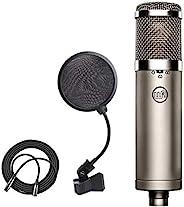 Warm Audio WA-47jr FET 电容麦克风 + 4 英寸流行滤波器 + XLR 麦克风电缆