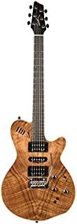 Godin Guitars 036523 立体电吉他