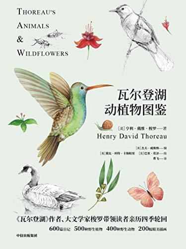 瓦尔登湖动植物图鉴