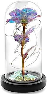 玻璃玫瑰花 LED 灯,带彩色金箔,送给她的礼物