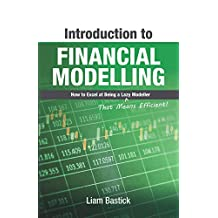 Introduction To Financial Modelling: How to Excel at Being a Lazy (That Means Efficient!) Modeller (English Edition)