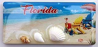 佛罗里达海贝木磁贴