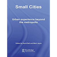 Small Cities: Urban Experience Beyond the Metropolis (Questi…