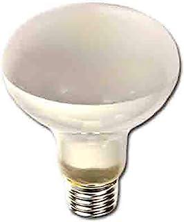 Edm 35227 反射灯,100 W