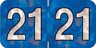 Doctor Stuff - 2021 年标签,全息系列,Holo Blue 贴纸,500/卷,1 卷,3/4 英寸 x 1-1/2 英寸