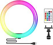 Neewer 10 英寸(约 25.4 厘米) RGB 环灯自拍灯环带 C 型手机支架,红外遥控,可调光 16 种颜色和 4 种闪光模式,适合化妆/直播/YouTube/Tiktok/视频拍摄(无支架)