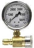 Valley Industries PK-QCG-5000 压力清洗仪,棕色