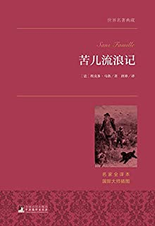 苦儿流浪记(名家全译·著名翻译家唐珍权威译作·国际大师插图)