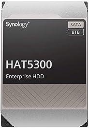Synology 3.5 英寸 SATA HDD HAT5300