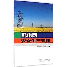 配电网安全生产管理
