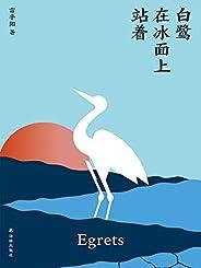 白鷺在冰面上站著(魯迅文學獎得主雷平陽全新非虛構結集,以人神鬼巫共生共榮的云南為寫作景深,打通現實與幻想的邊界!)