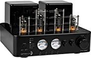 Dayton Audio HTA100BT 混合立体声电子管放大器,带有蓝牙 USB 辅助唱机输入低音炮,输出 100W