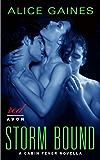 Storm Bound: A Cabin Fever Novella (English Edition)