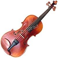 D Z Strad Model 365 小提琴 1/2 半尺寸,带开放透明色调(1/2 - 尺寸)