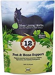 Silver Lining Herbs 12 马脚和*支持 - 支持*的马蹄生长 - 帮助支持*、肌腱和韧带 - 采用天然*制成 - 1 磅袋装