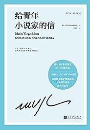 """略萨作品:给青年小说家的信(诺贝尔文学奖得主巴尔加斯·略萨12堂""""奢侈""""的小说课,深刻剖析文学创作理论和实际技巧)"""