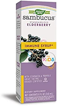 Nature's Way 兒童接骨木莓飲品 Bioavailable Elderberry 8盎司(24