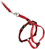 Petsafe Come With Me Kitty Harness and Bungee Leash, Small, Red