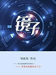镜子(豆瓣8.4分高分书单,《三体》,《流浪地球》作者刘慈欣作品)