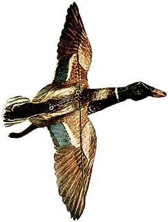 Jackite Mallard Duck Drake 风筝,32 英寸翼展
