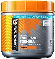 Gatorade Endurance Formula 营养粉,橙子,32 盎司,907克