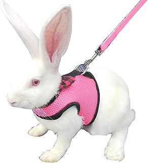 DONGKER 兔背带,可调节软背带透气网眼背心,带可爱蝴蝶结,适合兔子、豚鼠仓鼠