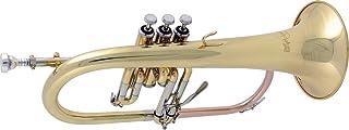 Bach FH600 *系列 Bb Flugelhorn FH600 漆