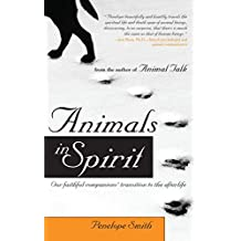 Animals in Spirit: Our faithful companions' transition to the afterlife (English Edition)