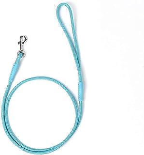 宠物*尼龙狗绳 4 英尺(约 1.2 米)适用于日常户外散步跑步训练坚固耐用的传统风格牵狗绳,适合小型、中型和大型犬(天蓝色,大号)