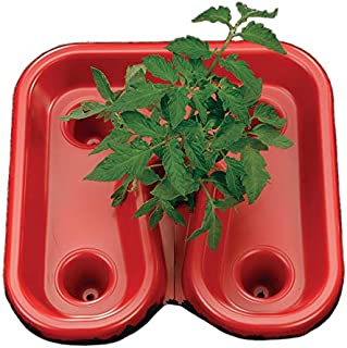 Park Seed 红番茄自动化托盘,多用途喂食器,浇水,除草器,包括 3 个托盘