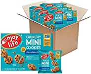 Enjoy Life Crunchy Mini Cookies, Soy free, Nut free, Gluten free, Dairy free, Non GMO, Vegan, Chocolate Chip,