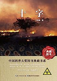 十字 (中国科幻基石丛书)