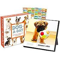 Dog a Day 2021 日历,盒装版套装 - 豪华 2021 每日狗狗日照盒日历,带 100 多个日历贴纸
