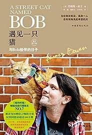 遇見一只貓:與Bob相伴的日子(流浪貓鮑勃完成了治愈人類的使命,光榮的回喵星了,這些溫暖人心的瞬間變成了永恒。)