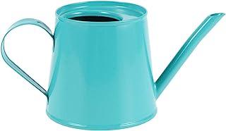 Cabilock 迷你洒水壶 可爱铁浇水壶 植物浇灌盆长喷水罐 适合儿童 多肉盆栽花园花(蓝色)