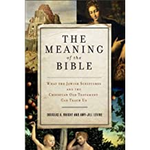 The Meaning of the Bible: What the Jewish Scriptures and Christian Old Testament Can Teach Us (English Edition)