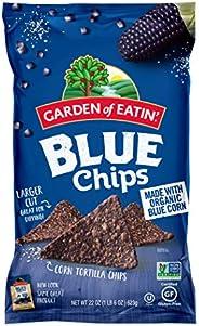 Garden of Eatin' 蓝玉米脆玉米片, 22 盎司(623g) (10件装) (包装可能与图