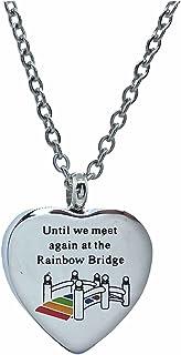 彩虹桥宠物狗猫浮雕灰烬纪念缸吊坠项链首饰填充套件包括