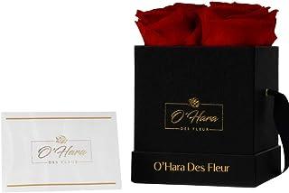 O'HARA DES FLEUR | 持续一年或以上的真玫瑰| 盒子中保存玫瑰,无需浇水或处理野生花瓣(经典红色,黑色皮革盒)