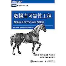 数据库可靠性工程:数据库系统设计与运维指南(图灵图书)