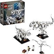 LEGO 乐高 创意系列 恐龙化石 21320