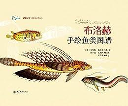 """""""布洛赫手绘鱼类图谱 (博物文库·博物学经典丛书)"""",作者:[马库斯·布洛赫]"""