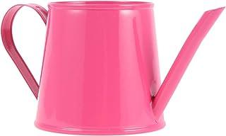 Cabilock 迷你洒水壶 可爱铁浇水壶 植物浇灌盆长喷水罐 适合儿童 多肉盆景花园花(玫瑰色)