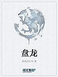 盘龙(阅文白金大神作家作品)